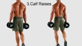 Best Leg Workouts Exercises For Legs Men At Home